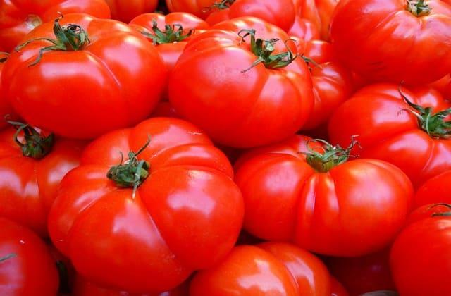 Kandungan tomat yang perlu kamu tahu