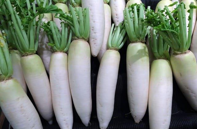 Lobak, sayuran yang kaya potasium dan bermanfaat untuk menjaga kadar kolesterol normal