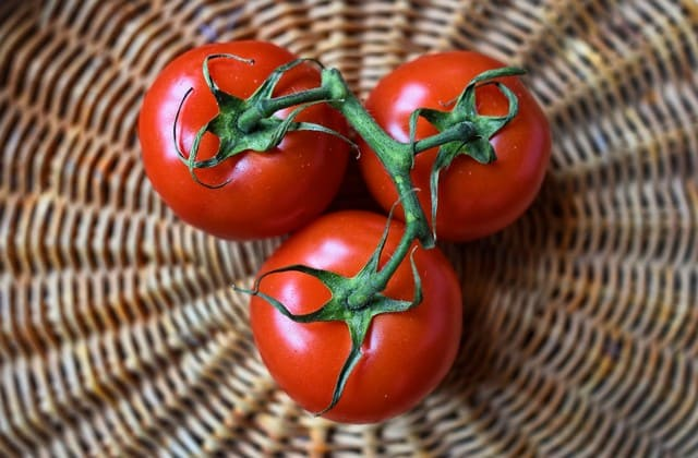 Manfaat tomat yang luar biasa