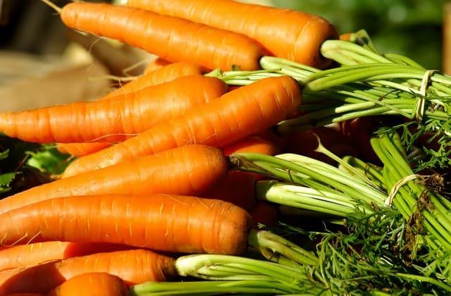 Wortel, sayuran yang cukup mudah didapatkan, tapi bisa membantu kamu tetap sehat