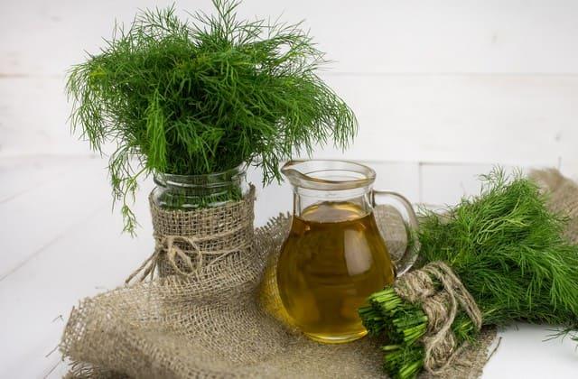 minyak zaitun untuk menghilangkan kerutan dibawah mata