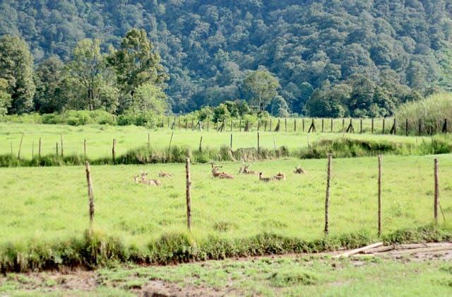 10 Wisata Alam Bandung yang Bikin Stress Kamu Hilang Seketika. Nomor 2 Bikin Kamu Fresh dan Bersemangat