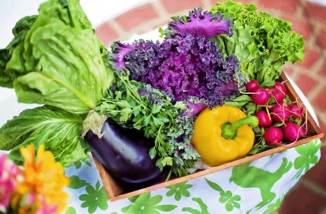 Sayuran tinggi serat memang baik untuk sistem pencernaan, tapi baik juga untuk menormalkan kadar gula darah yang tinggi